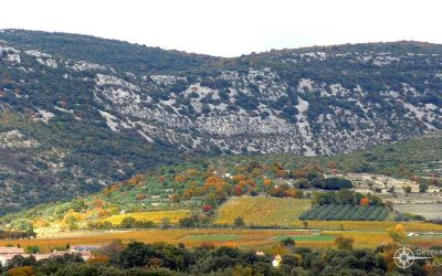 Inforeise in die Provence