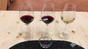 Weinprobe im Carré du Palais